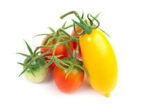 分行红色蕃茄黄色 免版税库存图片