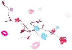 分行花卉亲吻跟踪 免版税库存照片