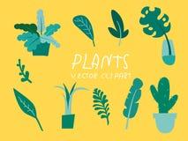 分裂叶子,棕榈,香蕉热带森林春季水彩,密林热带植物学 向量例证