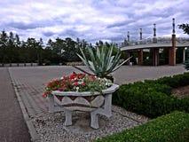 分配为花坛的区域 免版税库存图片