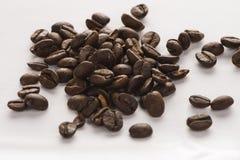 分隔的大咖啡豆 免版税库存图片
