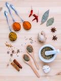 分类干香料白胡椒,小茴香,月桂叶,桂香, s 免版税图库摄影