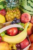 分类异乎寻常的果子 免版税库存图片