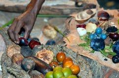分类果子和种子食物的Yirrganydji原史妇女手 免版税库存图片