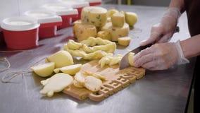 切与刀子的乳酪厂的工作者新鲜的干酪戴着特别手套 影视素材