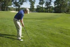 切削在绿色上的高尔夫球运动员 库存图片