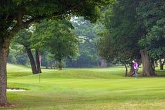 切削在绿色上的高尔夫球运动员 免版税库存图片