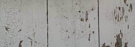 切削的和被风化的被绘的木背景全景 免版税图库摄影