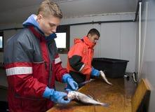 切割工钓鱼少年 免版税库存图片