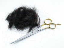 切口头发 库存照片