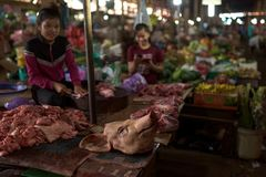切在食物市场里面的柬埔寨女孩猪肉 库存照片