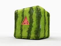 切基因改造的三角西瓜 免版税库存照片