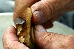切夏天等概率圆帽子的更老的蘑菇捡取器的手 图库摄影