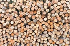 切好的干燥木柴日志加起了 库存照片