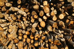 切好的木头棍子在栈的 免版税库存图片