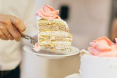 切婚宴喜饼 库存照片