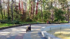 切尔卡瑟州,乌克兰,2018年10月17日:有乘坐一辆大三轮车的小孩子的母亲,在秋天公园 温暖的秋天 股票视频