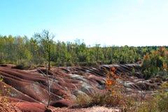 切尔滕纳姆荒地足迹,加拿大 库存图片