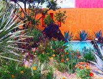 切尔西花展的一个展示庭院 免版税图库摄影