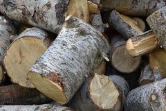 切开准备好的木柴被堆积在冬天 免版税图库摄影
