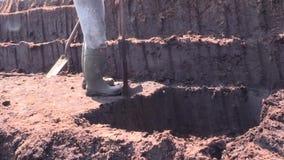 切开和与一把锹的贴合草皮泥煤在青苔沼泽在爱尔兰 股票视频
