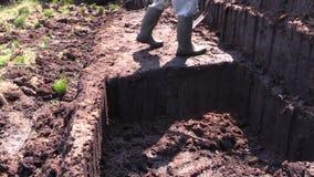 切开和与一把锹的贴合草皮泥煤在青苔沼泽在爱尔兰 影视素材