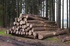切开在堆堆积的木头 免版税图库摄影