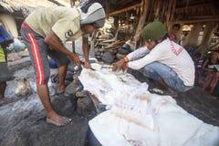 切开大鱼的渔夫 (Lamalera,印度尼西亚) 库存照片