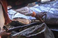 切开大鱼的渔夫 (Lamalera,印度尼西亚) 免版税库存照片