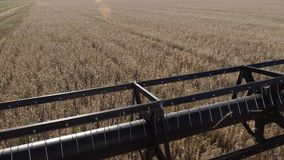 切开成熟大麦词根的脱粒机刀片在秋天关闭 股票录像