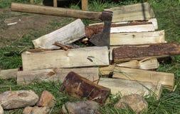 切开木柴和老轴在绿草 污染概念有害的环境人力的需要回收根土壤结构树 库存图片