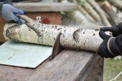 切开木头的两名工作者 免版税图库摄影