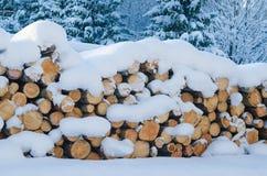 切开注册冬天木头在随风飘飞的雪下 免版税图库摄影
