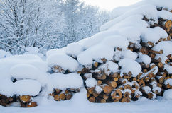 切开注册冬天木头在随风飘飞的雪下 库存照片