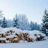 切开注册冬天木头在随风飘飞的雪下 免版税库存图片