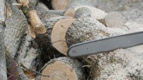 切开通过与锯的木头 影视素材
