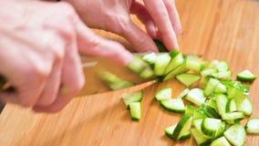 切开黄瓜的刀子烹调的沙拉的特写镜头女性手的在一个木切板 家庭厨房 健康 股票视频
