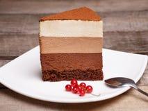 切片三巧克力沫丝淋蛋糕 免版税图库摄影
