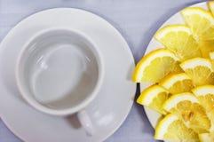 切片与一个杯子的柠檬有浅景深的 库存图片