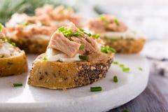 切片与新鲜的金枪鱼的长方形宝石 免版税库存照片