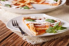 切片与杏子特写镜头的意大利馅饼 水平 库存图片