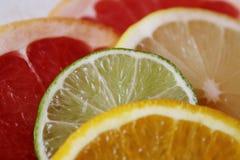 切片各种各样的柑橘水果,夏天维生素的准备的成份喝 图库摄影