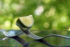 切片在两把叉子的石灰 库存照片