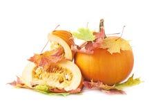 切片在槭树叶子的橙色南瓜 库存照片