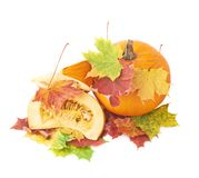 切片在槭树叶子的橙色南瓜 图库摄影