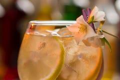 切片在饮料的柠檬 免版税库存照片