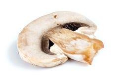 切片宏指令被隔绝的白色共同的蘑菇 库存照片