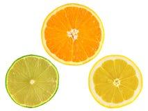 切片成熟桔子,柠檬,在白色的石灰 库存照片