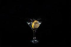 切片柠檬到玻璃里 免版税库存照片