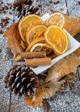 切片桔子和柠檬烘干了agrumes 库存图片